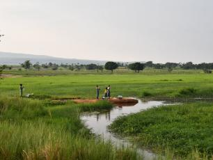 Rural area in Burkina Faso